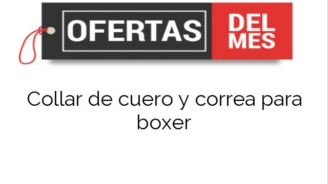 Collar de cuero y correa para boxer